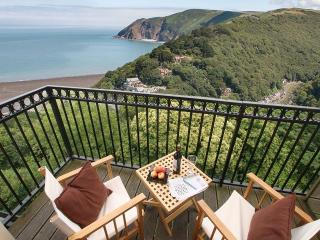 3 bedroom House with Internet Access in Lynton - Lynton vacation rentals