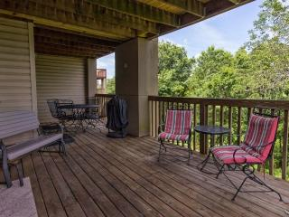 Branson Condo Rental | Eagles Nest | Indian Point | Silver Dollar City | Walkin - Branson vacation rentals