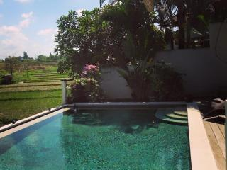 Nice Townhouse with Internet Access and A/C - Denpasar vacation rentals
