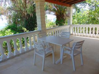 Seaside Luxury villa Apartment for 4-11 p - Benitses vacation rentals
