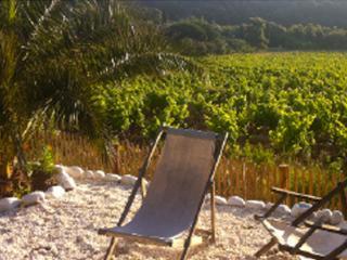 Cabaonon, Idylle am Weinfeld & Meer - Ramatuelle vacation rentals