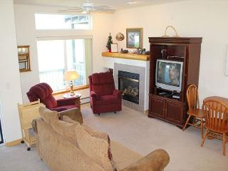 BRR120C Attractive Townhouse with Garage, Wifi, Fireplace, and Pet Friendly - Silverthorne vacation rentals