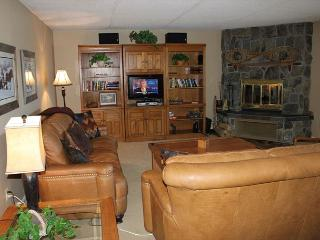 Large 3 Bedroom condo located on gorgeous Lake Dillon with covered parking - Dillon vacation rentals