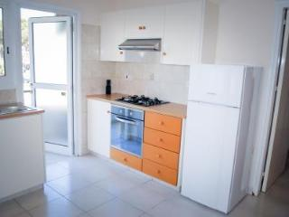 Bright Condo with A/C and Television in Larnaca District - Larnaca District vacation rentals
