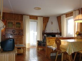 Cozy 2 bedroom Apartment in Moena - Moena vacation rentals