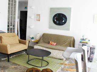 Artist's apartment, design with view on canal - Paris vacation rentals