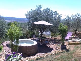 Romantic 1 bedroom Vacation Rental in Manosque - Manosque vacation rentals