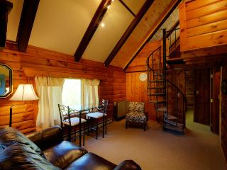 Log Home Lodging Catskill Mountains - Margaretville vacation rentals