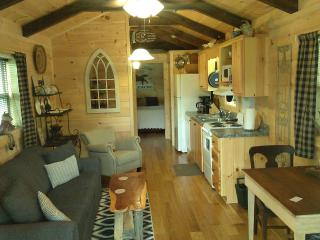 Romantic Cabin with Internet Access and A/C - Tryon vacation rentals