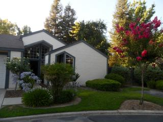 Room near Yosemite, Sequoia, KingsCanyon - Fresno vacation rentals