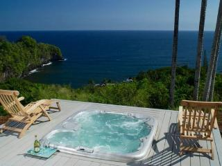 Perfect 1 bedroom House in Papaikou - Papaikou vacation rentals