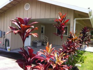 Malolo Street Hale - Pahoa vacation rentals