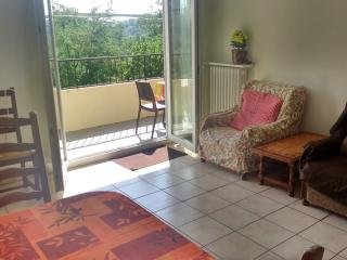 Cozy 3 bedroom Condo in Rodez - Rodez vacation rentals