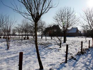 De Sneppelhoeve Vakantieappartement - Loenhout vacation rentals