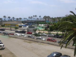 DMS 2 - La Pineda vacation rentals