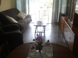 Bright 2 bedroom La Pineda Apartment with Internet Access - La Pineda vacation rentals