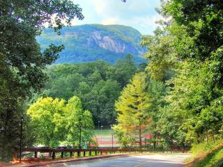 Best Mountain Log Home Paradise, all amenities - Lake Lure vacation rentals