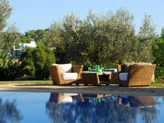 Porto Heli - Gv -  Casa del Mare Villa with large pool  & lovely garden near - Kosta vacation rentals