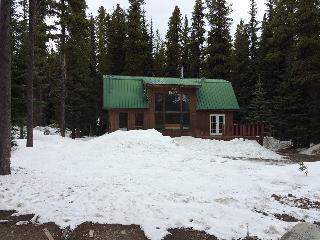 Apex Mt  Ski in/ Ski out cabin close to Penticton - Penticton vacation rentals