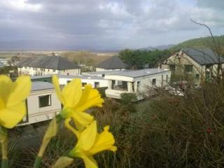 4* Caravan Holiday Park in Borth - Borth vacation rentals