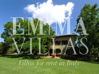 Villa Margaret 8+2 - Perugia vacation rentals