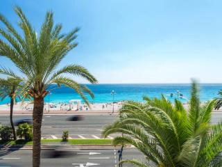 APPARTEMENT PALAIS HENRY IV - Nice vacation rentals