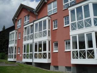 Schönes Ferienappartement im Harz in Braunlage - Braunlage vacation rentals