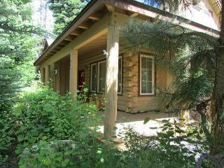 Come Stay in a Beautiful Cabin in the center of Paradise! - McCall vacation rentals