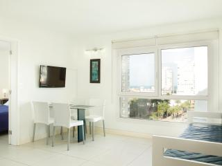 Modern 1 Bedroom Apartment in La Punta - Punta del Este vacation rentals