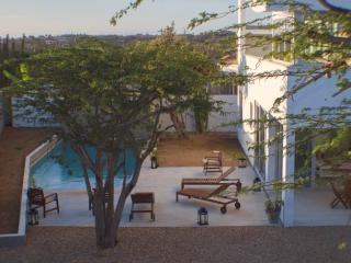 4 bedrooms & private pool & office & childfriendly - Paradera vacation rentals