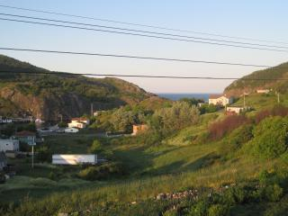 Gorgeous House with Deck and Internet Access - Saint John's vacation rentals