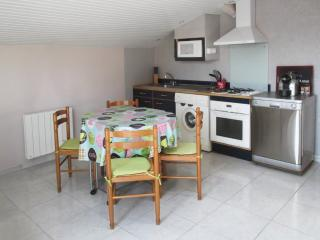 Peaceful apartment by the Arcachon Bay with private terrace, air con and WiFi – 800m from beach! - Ares vacation rentals