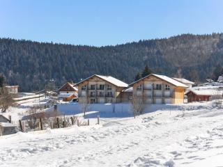 Modern apartment in the Vosges w/ central heating & mountain-view terrace, near ski & Longemer Lake - Xonrupt-Longemer vacation rentals