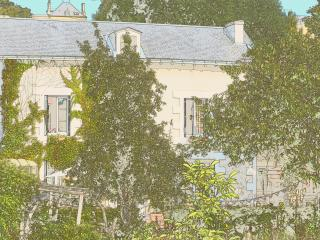 Nice Guest house with Garden and Short Breaks Allowed - Poitiers vacation rentals