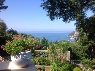 Nice 1 bedroom Capri Townhouse with Internet Access - Capri vacation rentals