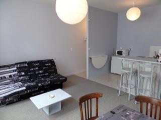 studio coeur de ville Aurillac - Aurillac vacation rentals