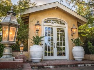Villa Aix Vineyards - Healdsburg vacation rentals