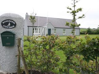 Lovely Cottage with Internet Access and Satellite Or Cable TV - Kinsale vacation rentals