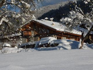 NATURE SKI LODGE STERWEN Hot tub and sauna free ski bus to funiculaire ARC 1600 - Landry vacation rentals