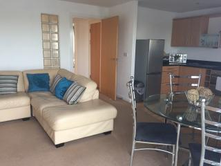 Millennium quay costal apartment with golf nearby - Llanelli vacation rentals