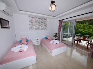 Villa Buğra - Kalkan vacation rentals