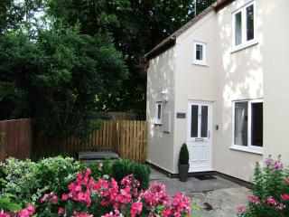 Cottage in Laugharne, Wales - Laugharne vacation rentals