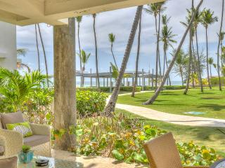 Nice Condo with Internet Access and A/C - Bavaro vacation rentals