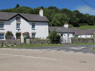 Gorrig Cottage - Llandysul vacation rentals