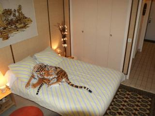 Nice Bed and Breakfast with Internet Access and Wireless Internet - Évry vacation rentals