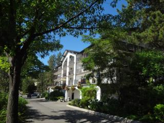 Nice Condo with Refrigerator and Water Views - Westbank vacation rentals