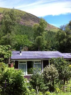 Wales UK - LOG CABIN - SECLUDED - PET FRIENDLY - Dolgellau vacation rentals