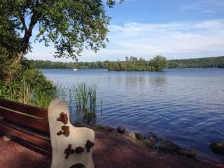 Cozy Beautiful  Lake Front, Free WiFi,  Cable TV - Lake Harmony vacation rentals
