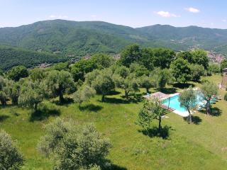 Casa degli Ulivi: The views are incredible! - Lisciano Niccone vacation rentals