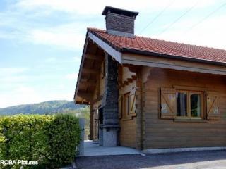 LES CASTORS - LA BRESSE - La Bresse vacation rentals